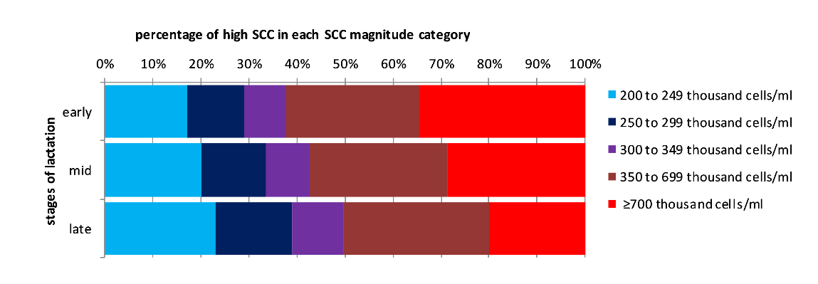Figure 3: Distribution of high SCC MRs between SCC magnitude categories for different stages of lactation