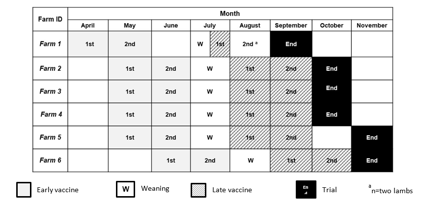 Figure 1 Schedule of timings for the first (1st) and second (2nd) vaccinations of the primary vaccine course for early and late vaccination groups, weaning and the end of trial on each of the six study flocks