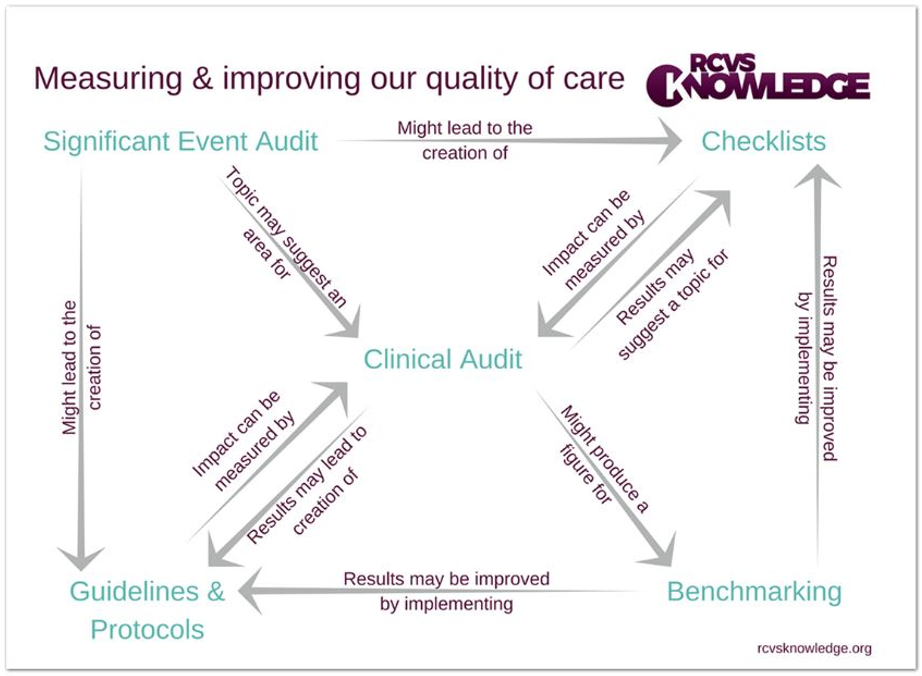 Figure 1: The relationships between audits and processes of quality improvement (RCVS Knowledge)